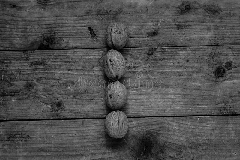 Black and white Letter i from walnuts. Black and white of top view of english alphabet made from walnuts on a wooden table. Letter I royalty free stock photos