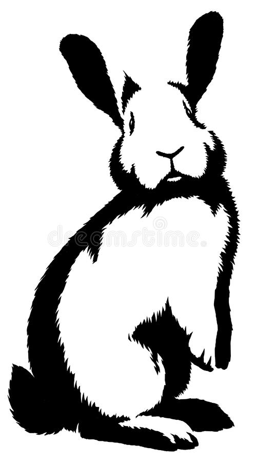 Black and white linear paint draw rabbit illustration. Black and white linear draw rabbit illustration stock illustration