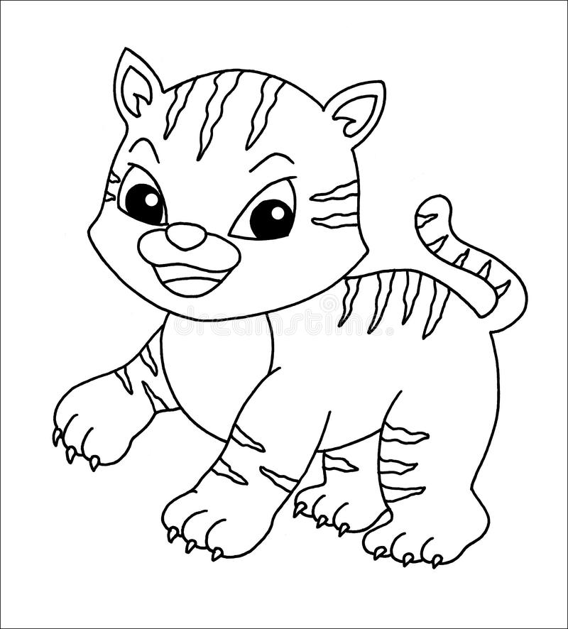 Black and white - little tiger stock image