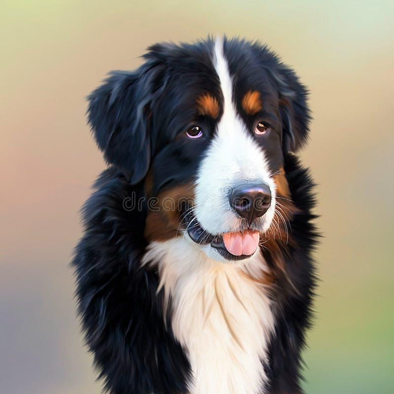 Black and White Long Coat Dog stock photo