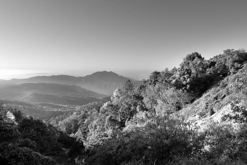 Download Black And White Mountain Landscape Stock Image - Image of landscape, forest: 26810375