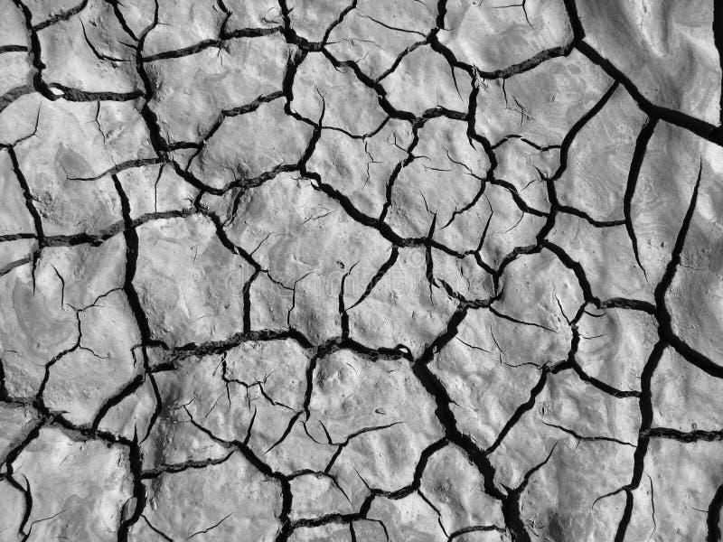 Black and white mud cracks royalty free stock photo