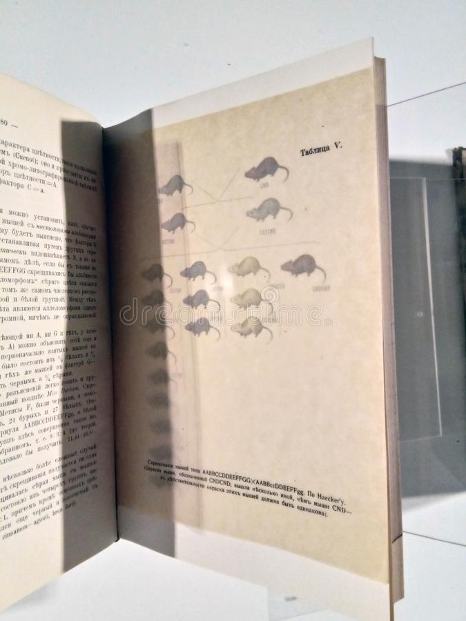 Black and white, old textbooks with lithographs, telling about ancient animals, mammals, their description and the table of crossi. Ng of individuals. the stock photo