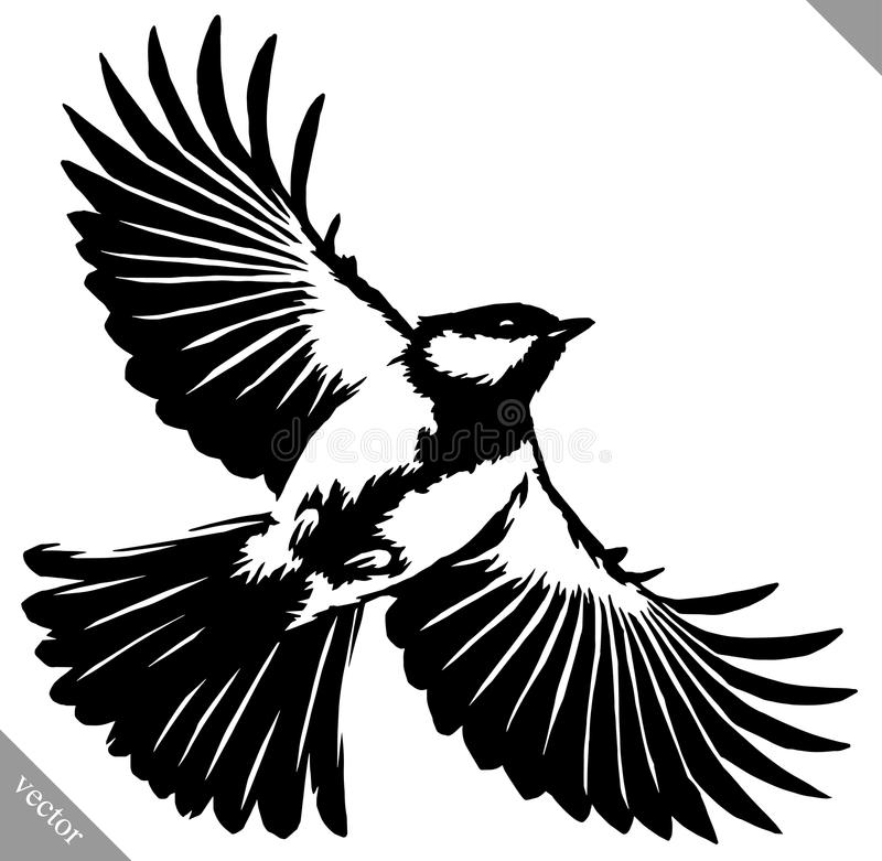 Black and white paint draw tit bird vector illustration. Black and white linear paint draw tit bird vector illustration royalty free illustration