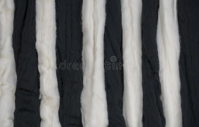 Black and white parallel tufts alternate, the concept of the symbol of the diversity of life, etc. Black and white parallel tufts alternate, the concept of the stock image