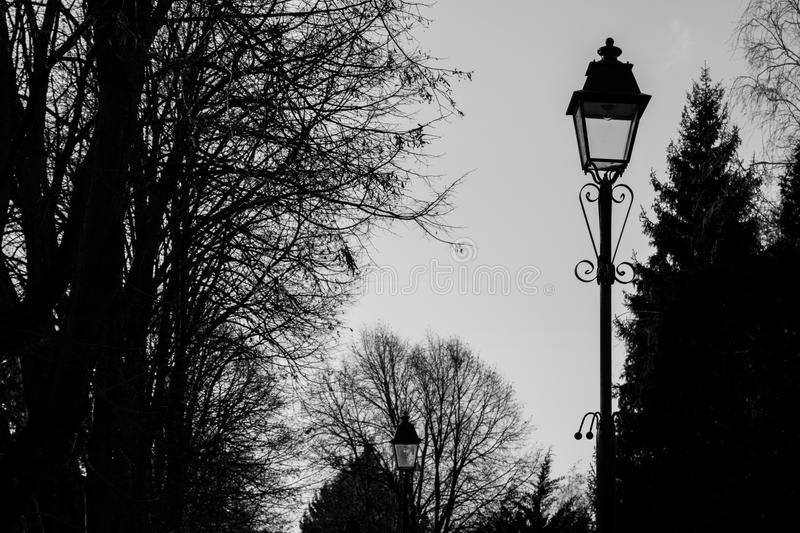 Black and white park landscape with tall lampposts stock photo