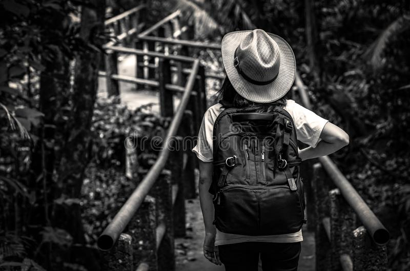 Black and white photo of Asian woman tourist with hat and backpack standing and start walking on nature trail bridge in evergreen stock photos