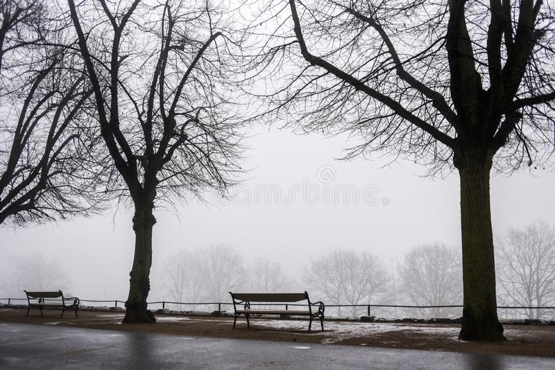 Black and white photo of benches in a park in the fog stock photos