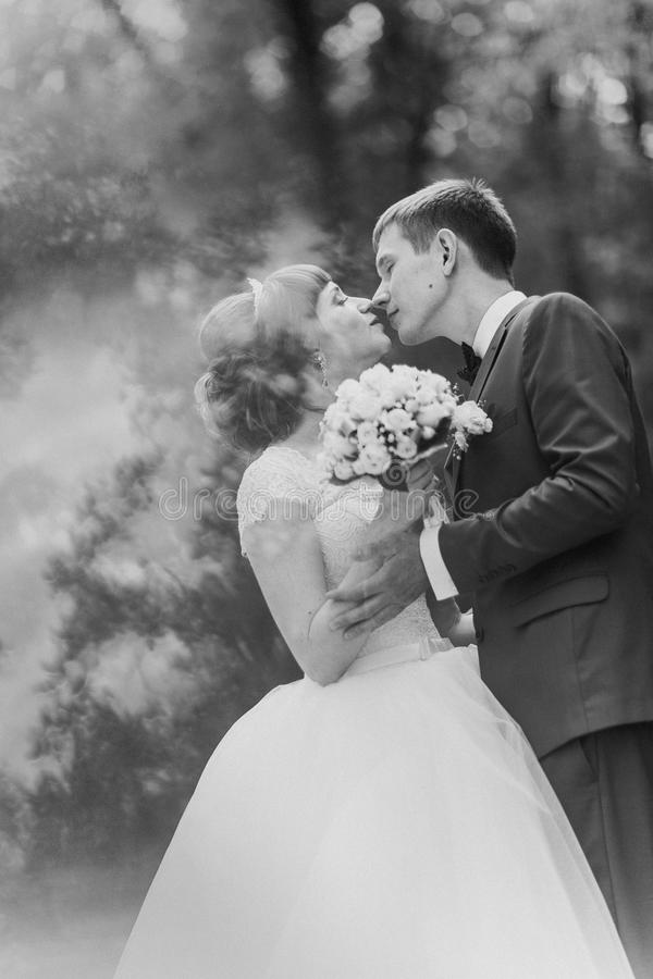 Black and white photo of bride groom kissing in a forest. Black and white photo of bride and groom kissing in a forest royalty free stock photography