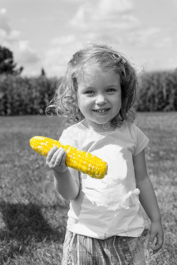 Black and white photo with color corn. Adorable little blonde Caucasian girl is on the field and eating a corn. The stalks of cor royalty free stock image