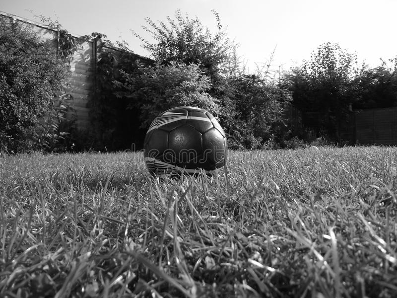 Black and white photo of a football in a garden. Took in the summer time. A fence and flowers in the background. Shade and lighting is unique. Grass is in stock image