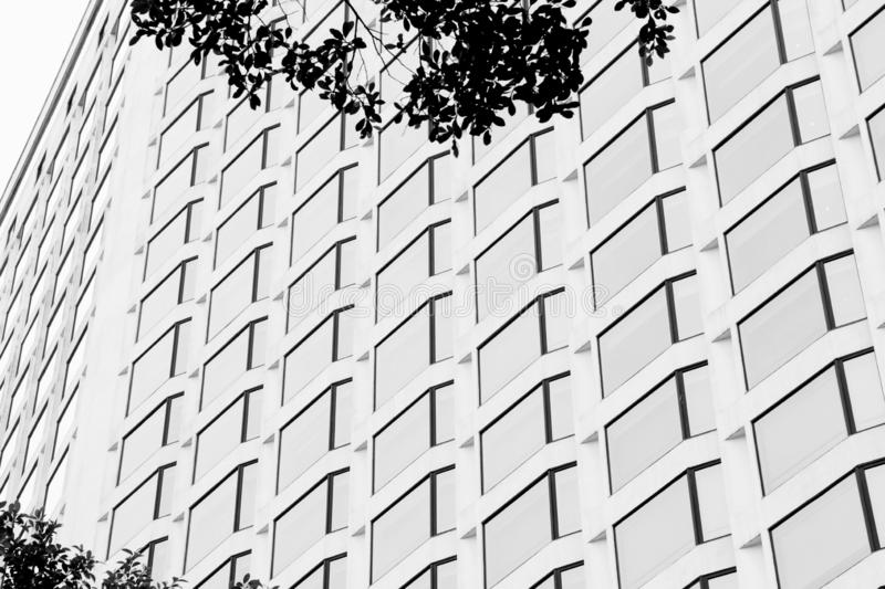 Dense window lines on building. Black & white photo, glass windows, lines and edges royalty free stock image