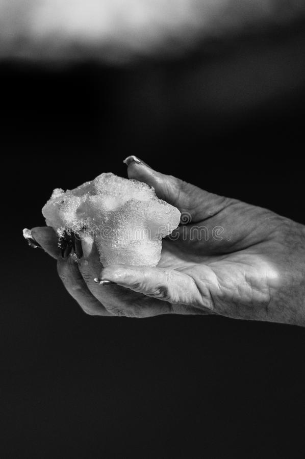 Black-and-white Photo of Hand Holding Snow royalty free stock image