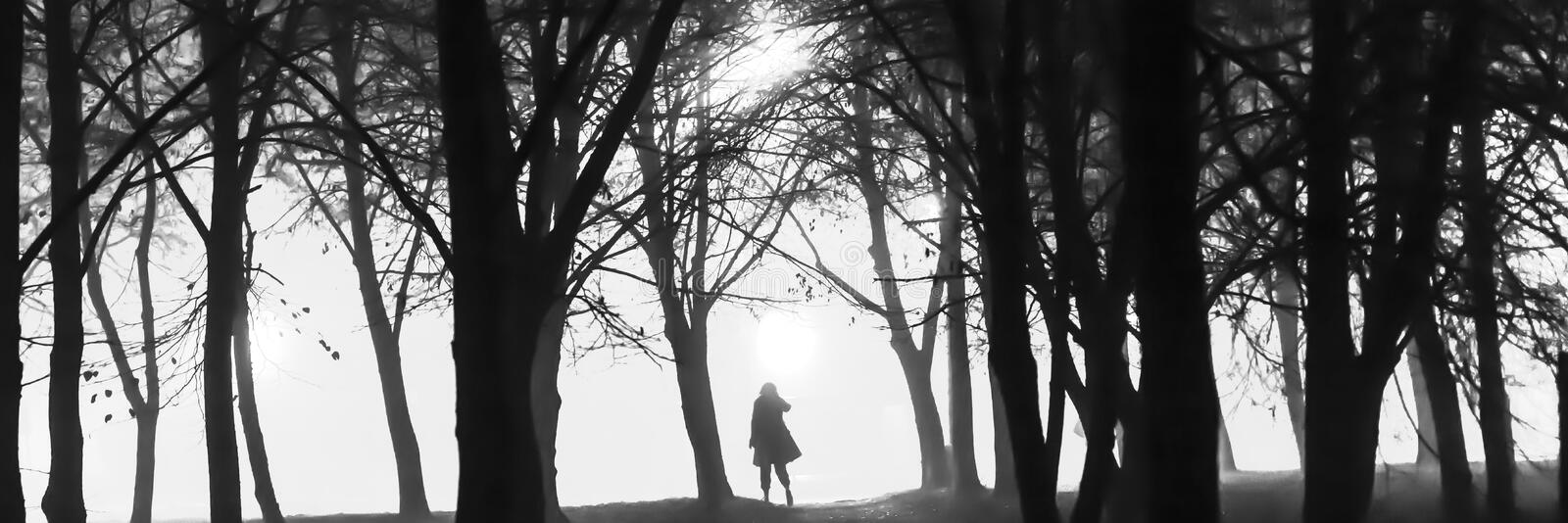 A black and white photo of a silhoutte of a person in between the trees at night stock photos