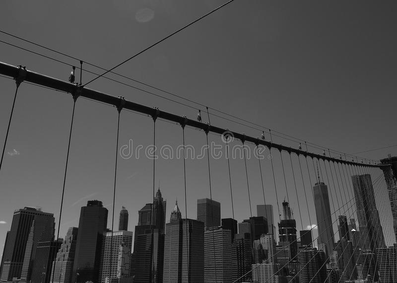 Black and white american bridge. This black and white photo was taken on the Brooklyn Bridge and represents the skyline of Manhattan, New York. In the picture royalty free stock photos