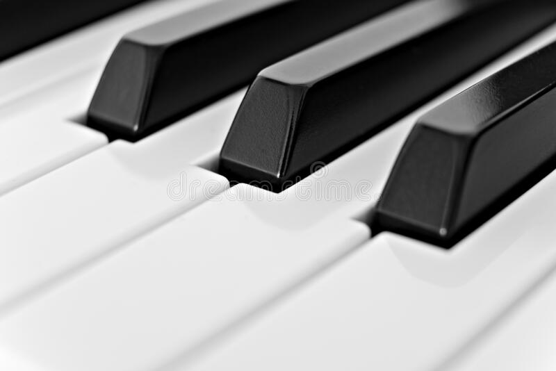 Black and White Piano Keys of a Keyboard royalty free stock photo