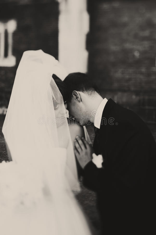 A black and white picture of a groom kissing bride`s shoulder.  stock photos