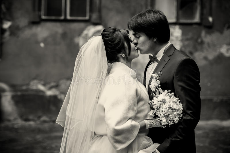 A black and white picture of kissing newlyweds standing on the b. Ackyard royalty free stock photos