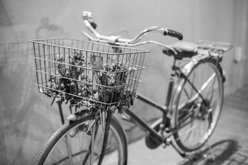 Black and white picture of vintage bicycle on vintage wall stock images