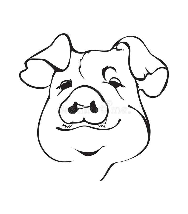 Line Drawing Of A Pig Face : Black and white pig fase stock vector image