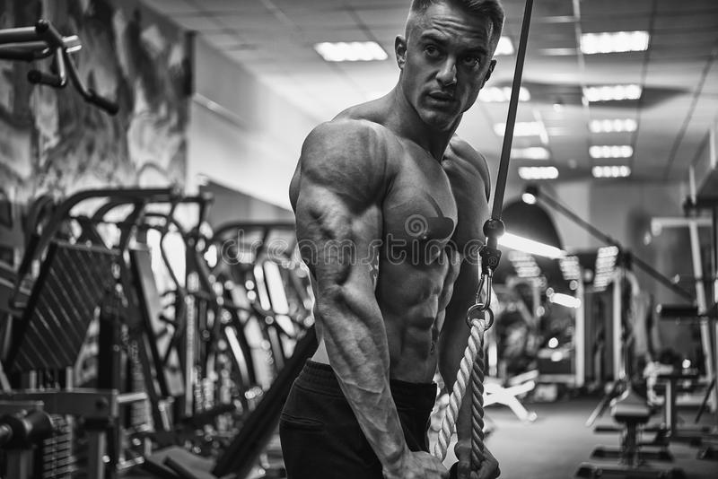 Download Black And White Portrait Of Confident Bodybuilder Workout Tricep Stock Photo