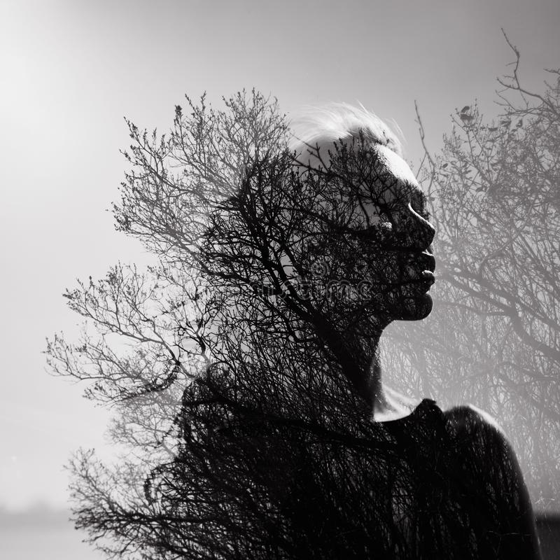 Black and white Portrait of a girl with a double exposure on a background of tree crowns. Delicate mysterious portrait of a woman stock photo