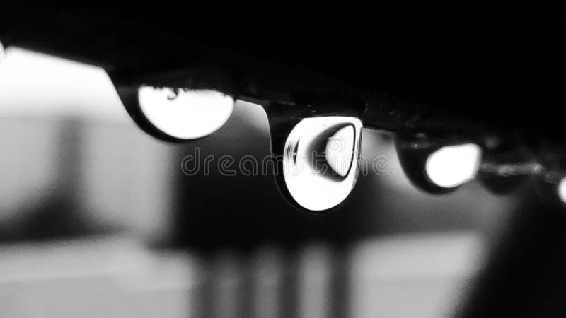 Raindrop. Black and white raindrop picture royalty free stock photography