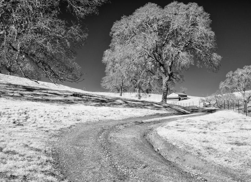Black and white, road to the ranch stock image