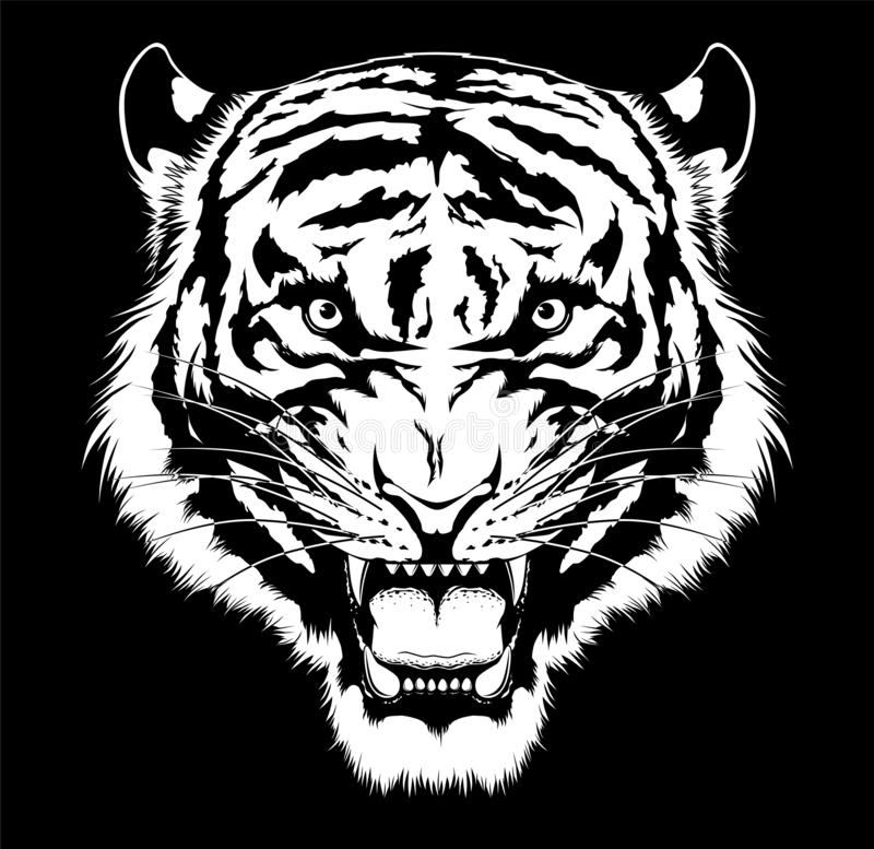 Black and white roaring tiger head royalty free stock photo