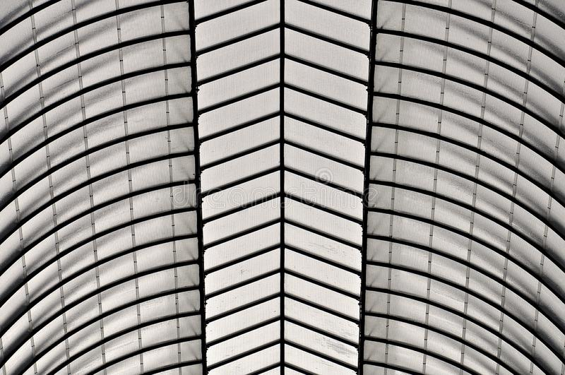 Black and white roof stock photo