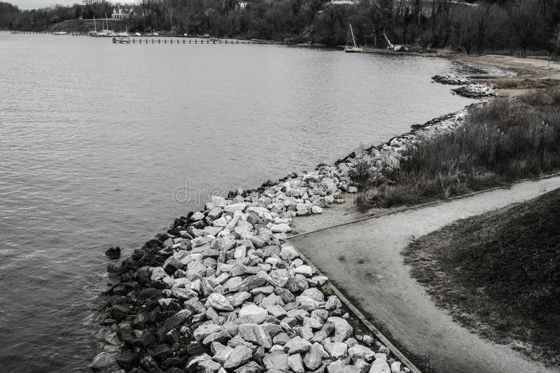 Black & White Scene of a Rocky Shoreline and wooded beach royalty free stock image