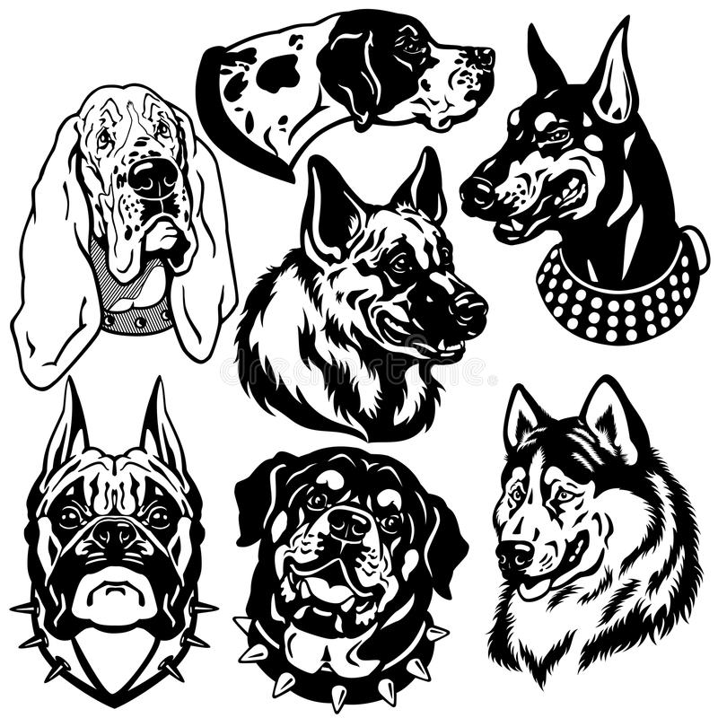 Black white set with dogs heads royalty free illustration