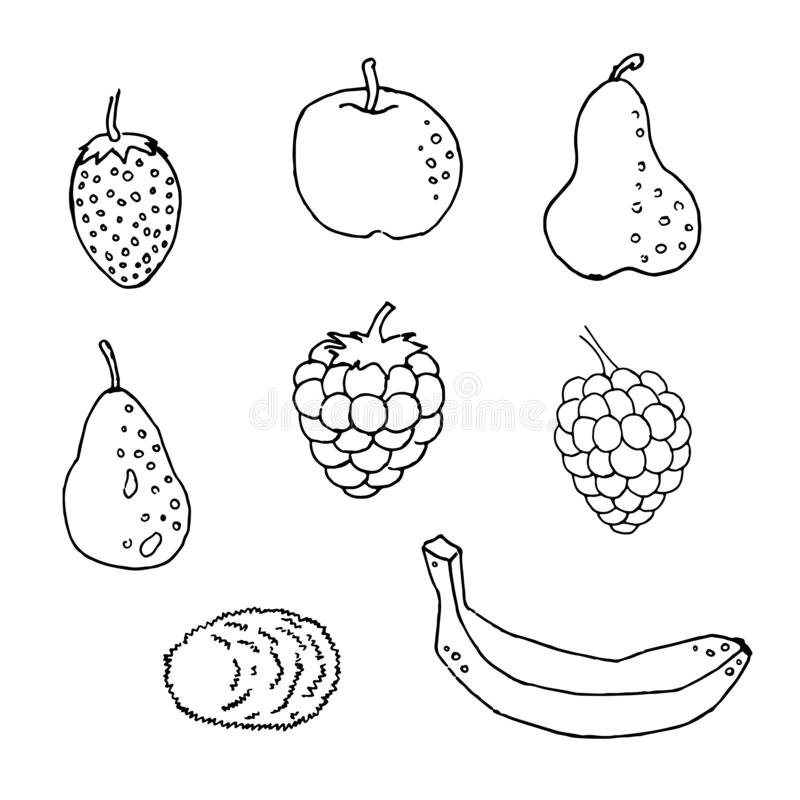 Black and white set of hand drawn tropical citrus fruit Ink sketch style. Good idea for templates menu, recipes. Greeting cards. royalty free illustration
