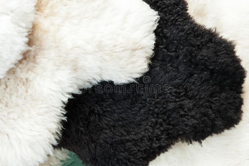 Black and white sheep skins royalty free stock images