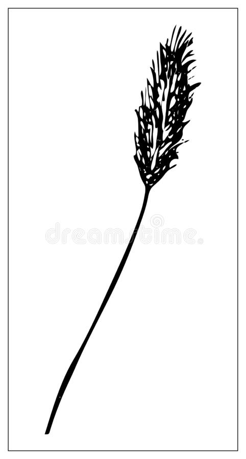 vector black and white silhouette of a blade of grass stock vector illustration of elegant herb 169366424 dreamstime com