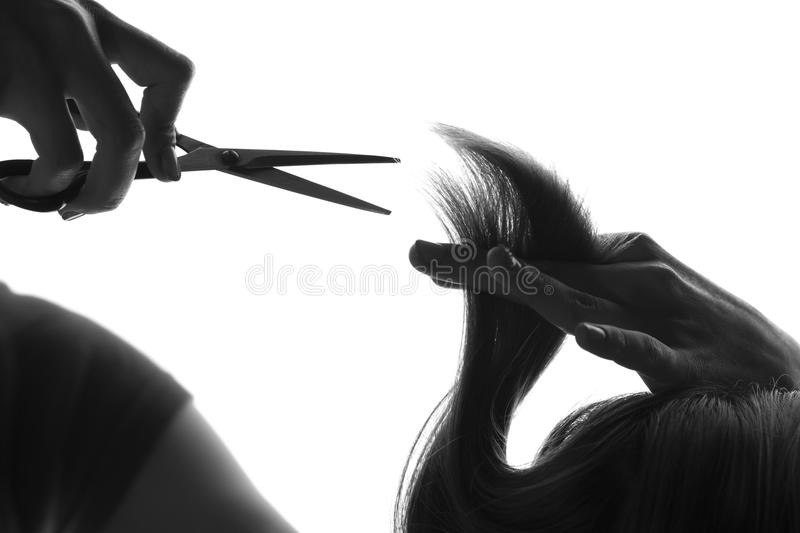 Black and white silhouette hairdresser cuts client's hair royalty free stock image