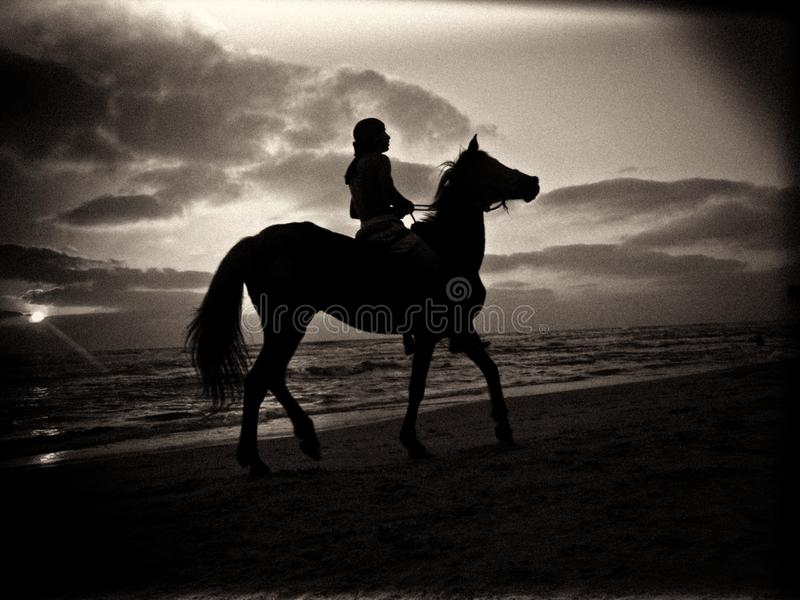 Black and white silhouette of a man riding a horse on a sandy beach under a cloudy sky during sunset royalty free stock photography