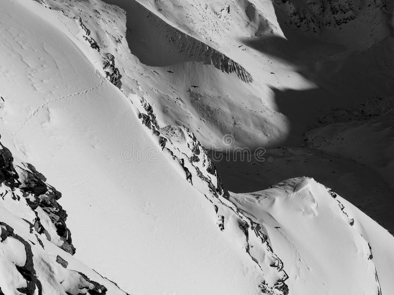 Black and white snow landscape stock image