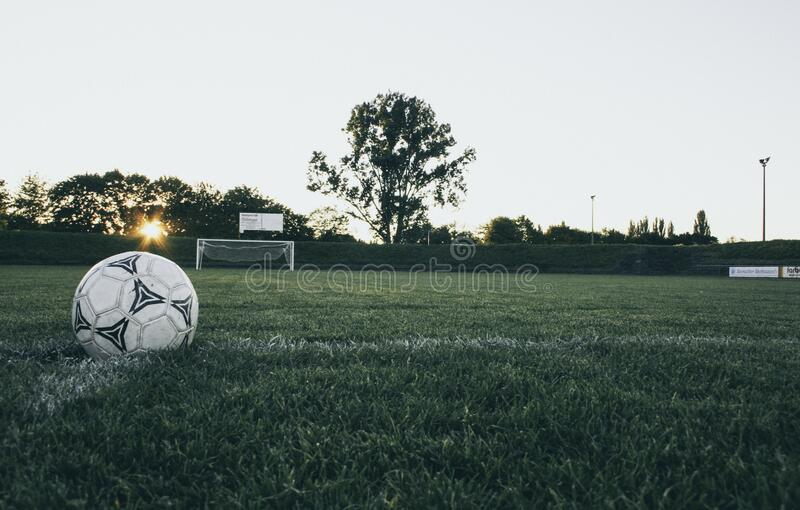 Black and White Soccer Ball on Green Grass Land during Daytime stock photo