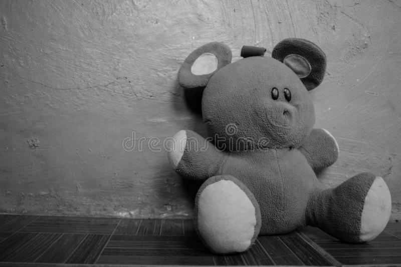 Black and White Soft Fluffy Teddy Bear Left Laying On The Floor stock photo