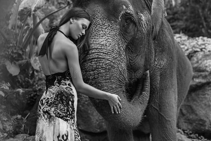 Black&white stående av en kvinna som kramar en elefant royaltyfri fotografi