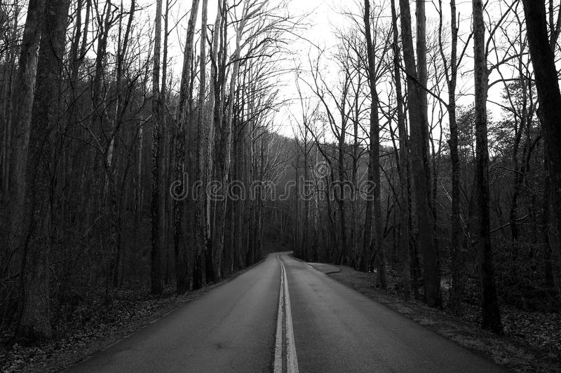 Black and White Street Photography of a Highway Through the Great Smoky Mountains. stock photo