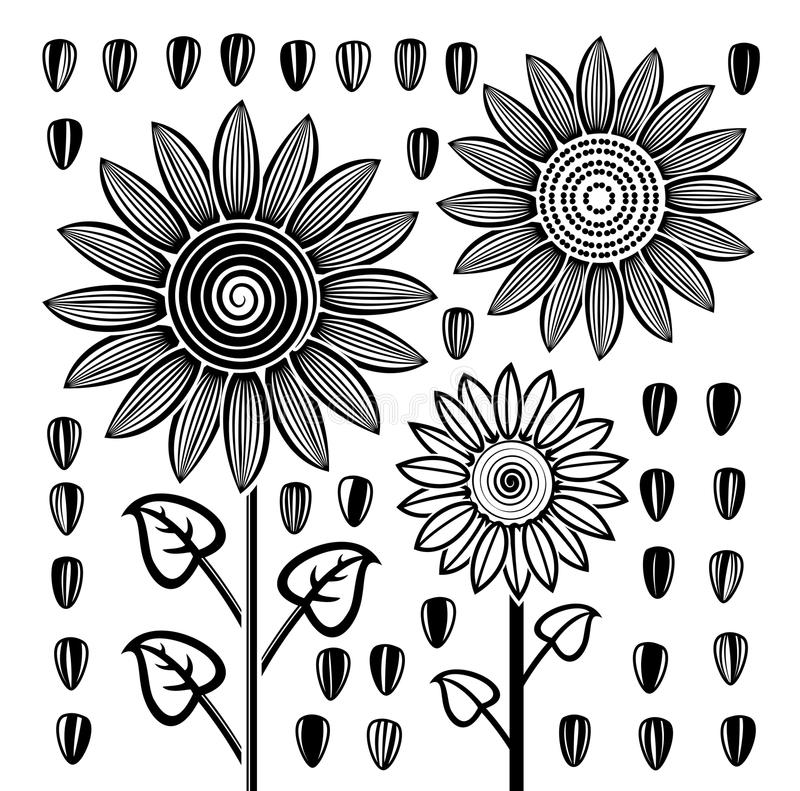 vector black and white sunflowers and seeds royalty free illustration