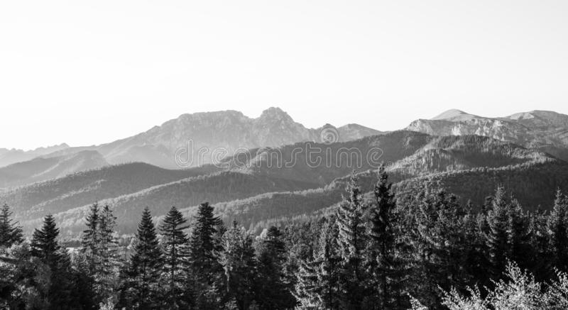 Black and white Tatra Mountains range in Poland - view on Giewont from Zakopane stock photo
