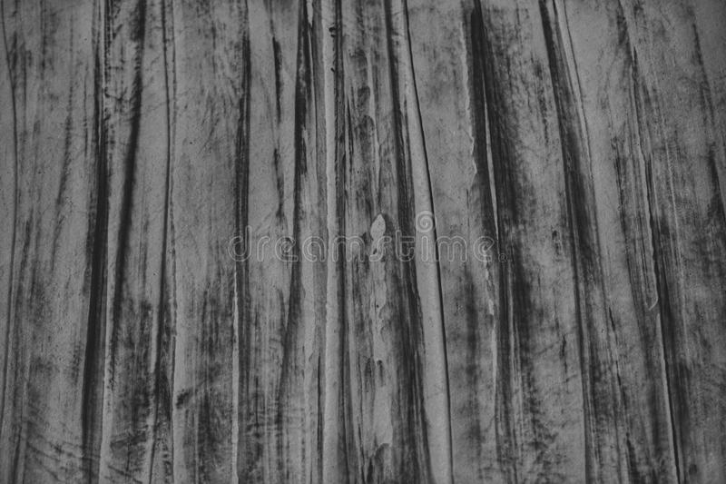 Wood texture. Black and white texture royalty free stock image
