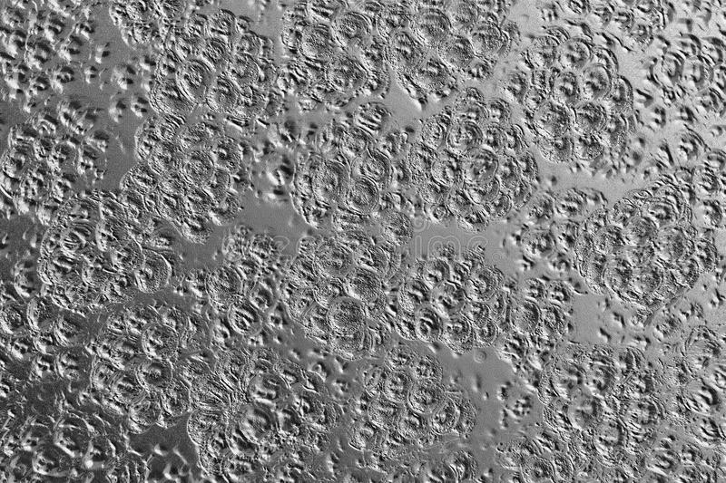 Black and white textured metal background. Damaged black and white metal background with small craters and indents stock photos