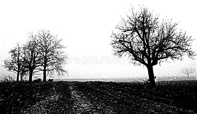 Black and white tree stock illustration