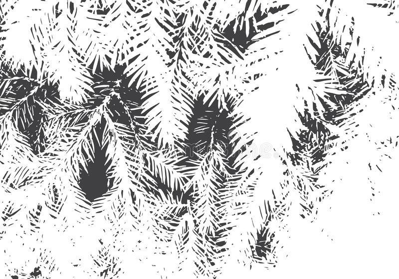 Fir branches texture. Grunge overlay. Nature illustration. Black and white vector background for retro design vector illustration