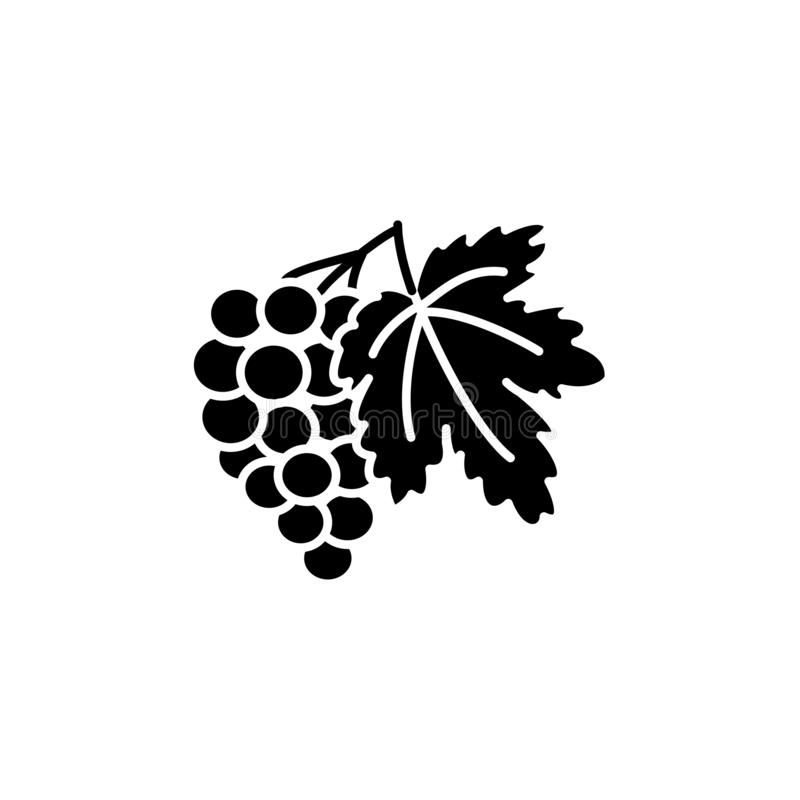 Black & white vector illustration of grape fruit with leaf. Flat. Icon of bunch of grapes. Vegan & vegetarian food. Health eating ingredient. Isolated object on stock illustration