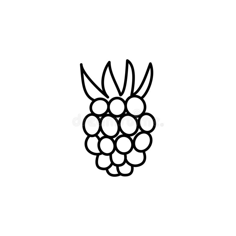Black & white vector illustration of raspberry. Line icon of fresh berry with leaves. Vegan & vegetarian food. Health eating royalty free illustration